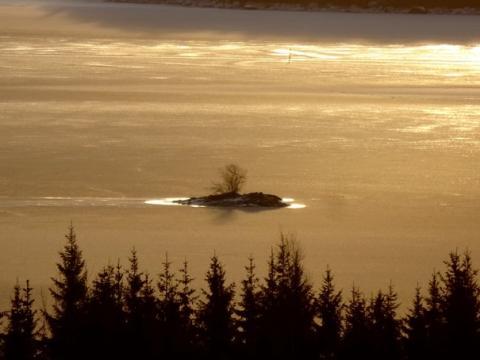 Insel im Haukivesi an den Saimaaseen