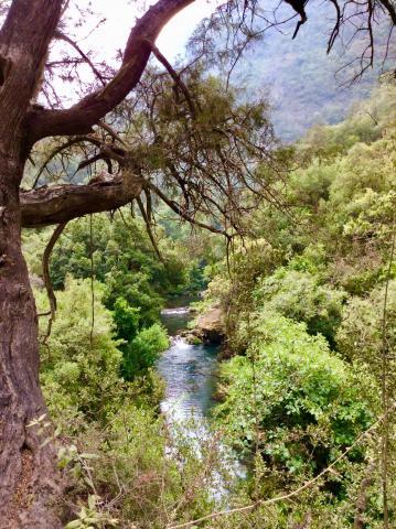 Akchour Nationalpark bei Chefchaouen