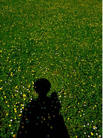 Schatten im Schlossgarten Stuttgart
