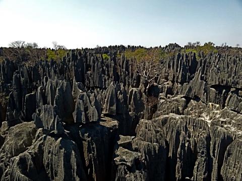 Great Tsingys of Bemaraha