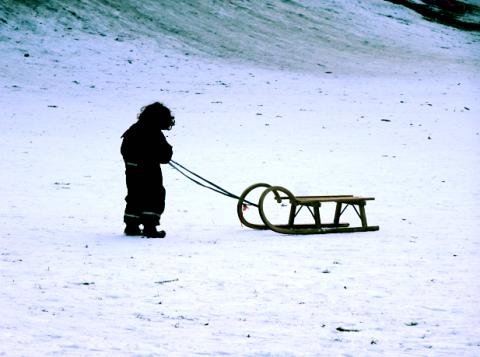 Im winterlichen Luitpoldpark