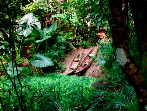 Kanus in der Masoala Halle im Zürcher Zoo