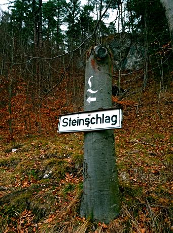 Auf dem Dreischlösserweg im Schwangau