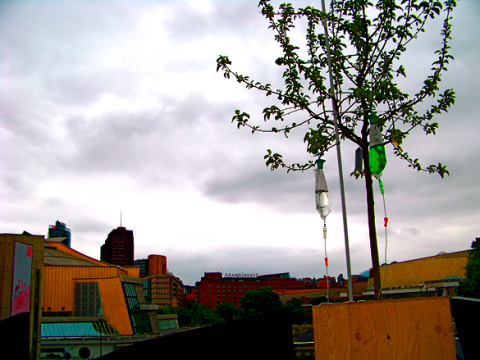 Kulturforum und Potsdamer Platz