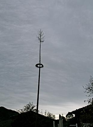 Maibaum im Wasmeier-Dorf