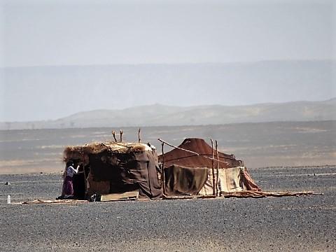 Nomadenzelt in der Sahara