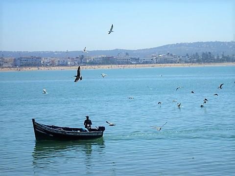 Am Fischereihafen von Essaouira