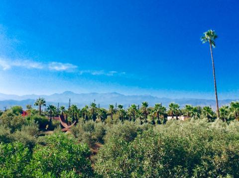 Im Anima-Park von André Heller bei Marrakech, Blick auf den Hohen Atlas